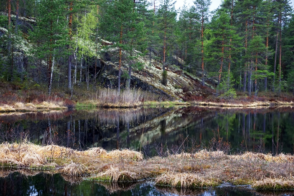 Südkarelien, Finnland: Eine Wanderung zum Kummakivi Fels in Ruokolahti