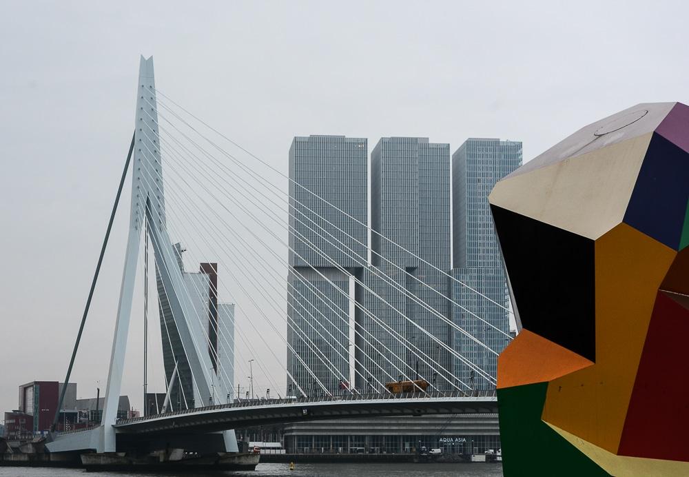 Die erste Flusskreuzfahrt mit der A-Rosa Silva auf dem Rhein. Mein Erfahrungsbericht und die Highlights von Holland und Belgien - Landgang, Sightseeing und Sehenswürdigkeiten in Rotterdam