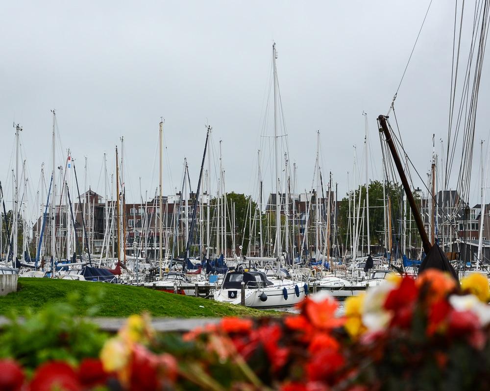 Die erste Flusskreuzfahrt mit der A-Rosa Silva auf dem Rhein. Mein Erfahrungsbericht und die Highlights von Holland und Belgien - Landgang, Sightseeing und Sehenswürdigkeiten in Hoorn