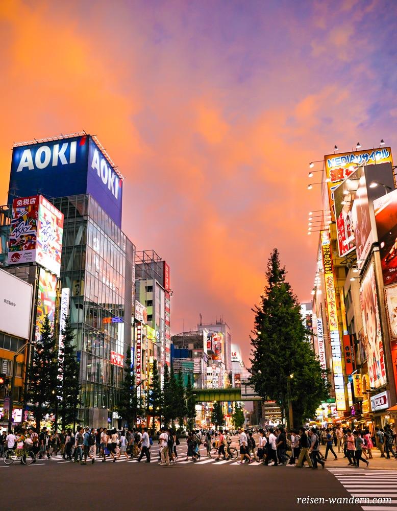 Akihabara in Tokio: Sehenswürdigkeiten und Things to do - Straßenaufnahme von Akihabara