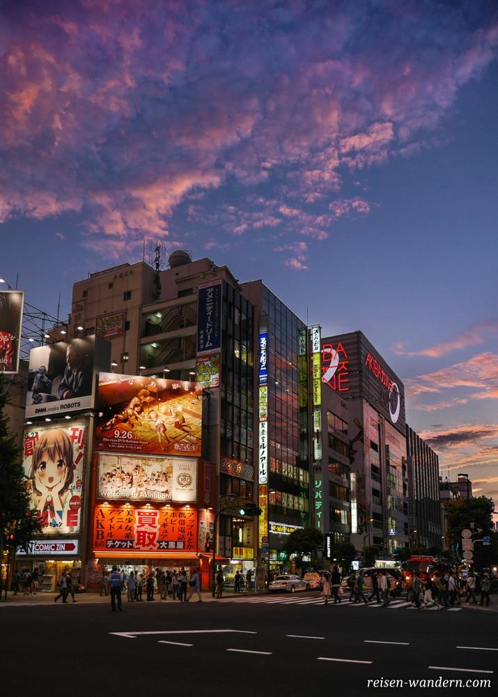 Akihabara in Tokio: Sehenswürdigkeiten und Things to do - Akihabara am Abend