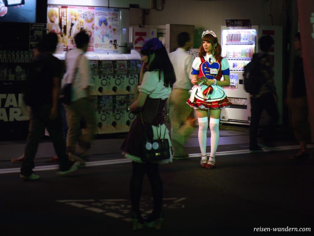 Akihabara in Tokio: Sehenswürdigkeiten und Things to do - Maid mit Maidkostüm in Akihabara