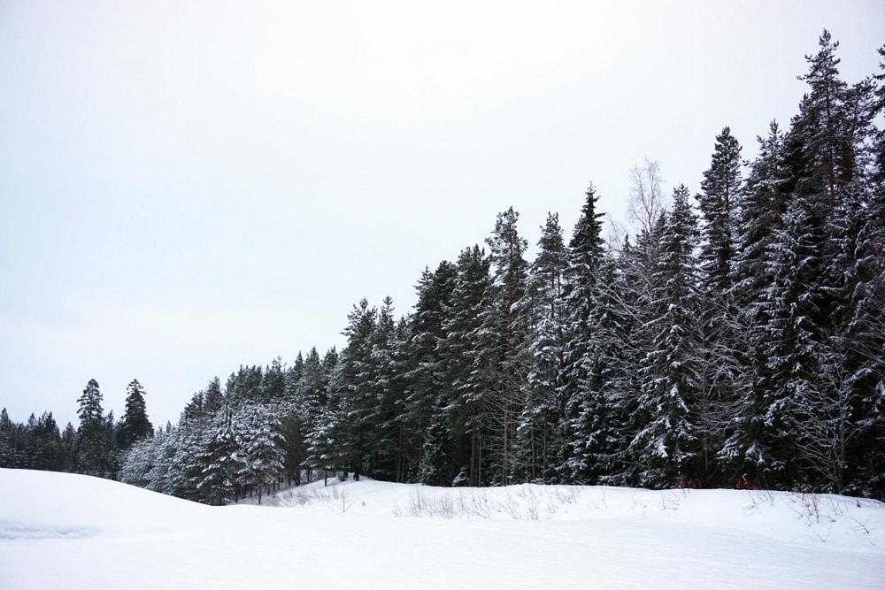 Jyväskylä in Lakeland, Finnland: Verschneite Landschaft im Winter