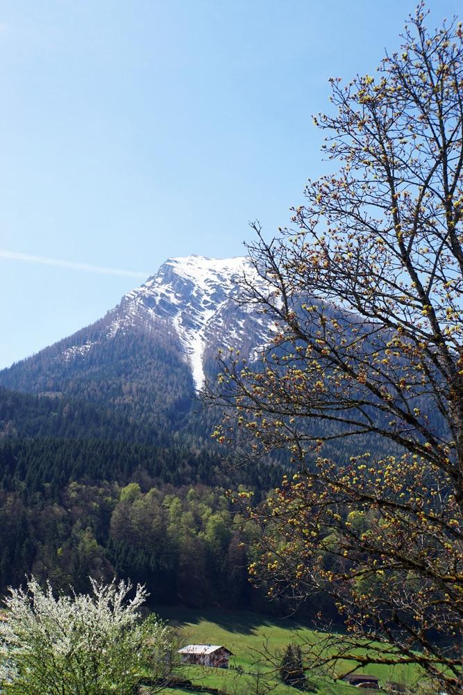 Berghotel Rehlegg in Ramsau bei Berchtesgaden: Garten mit Blick auf die Berge