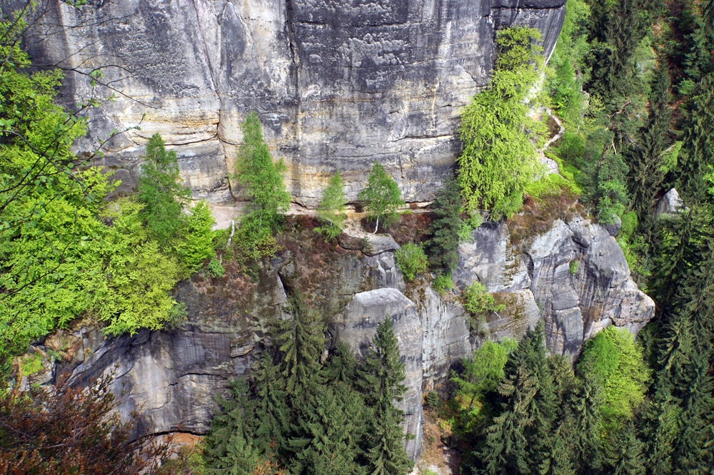 Klettersteig Sächsische Schweiz : Nationalpark saechsische schweiz via ferrata klettersteig