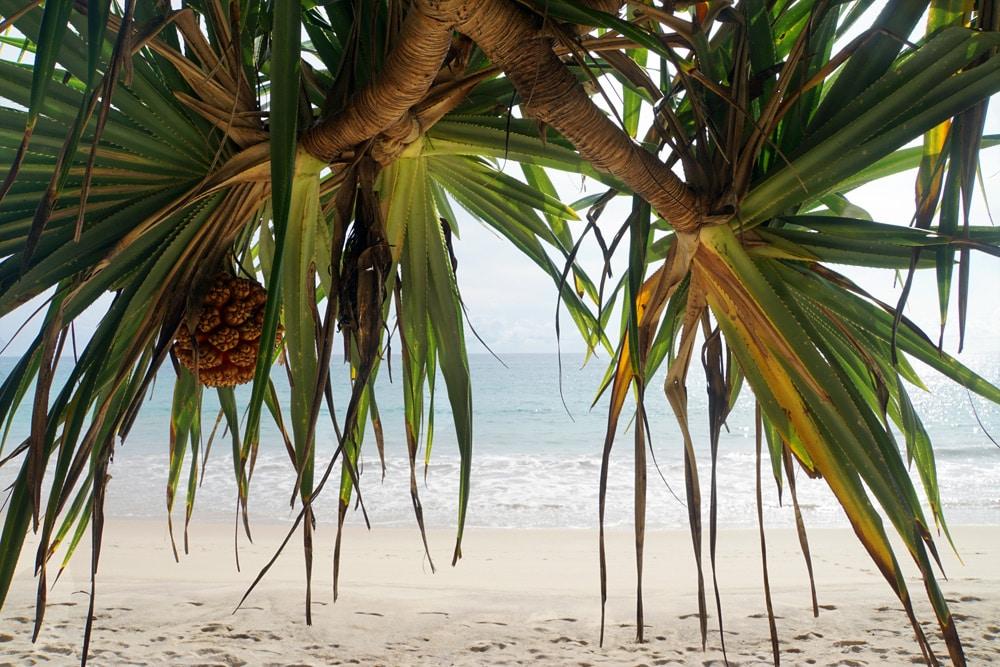 Layan Beach - schönste Strände auf Phuket