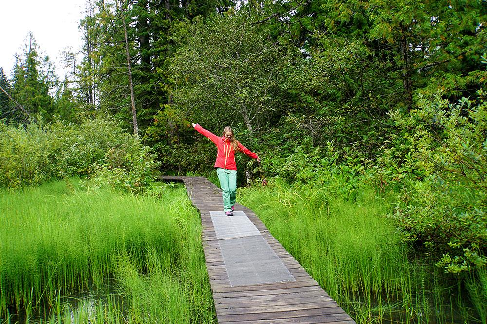 Kanada Rundreise: Highlights auf der Nationalparkroute von Vancouver nach Banff - Mount Revelstoke Nationalpark Skunk Boardwalk