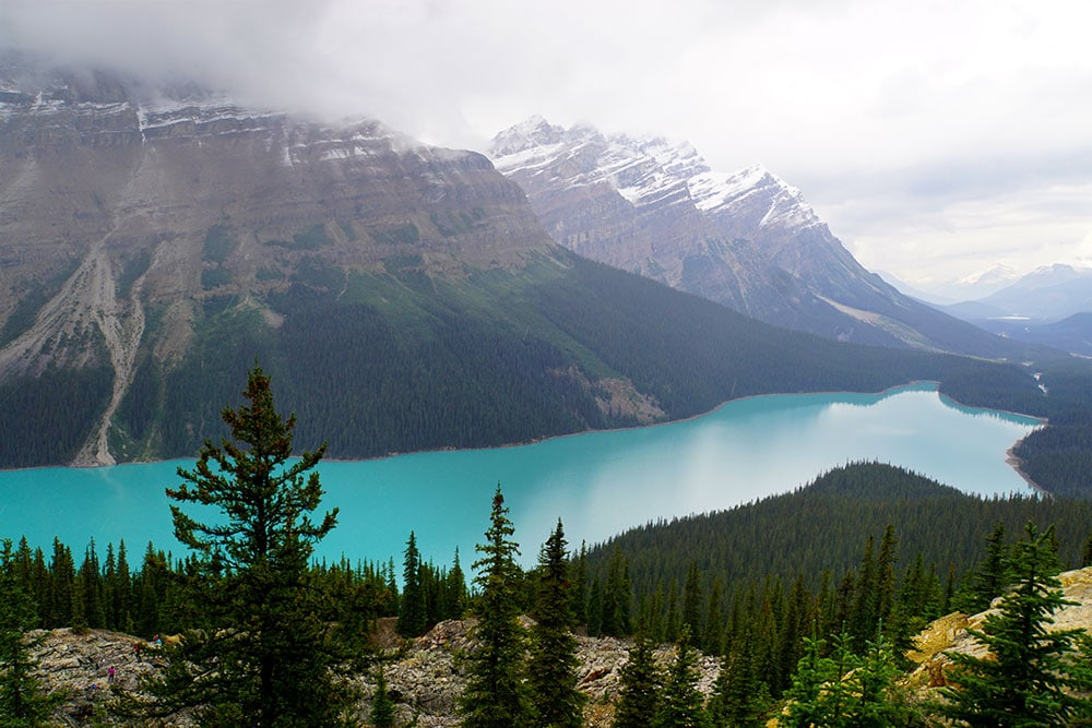 Kanada Rundreise: Highlights auf der Nationalparkroute von Vancouver nach Banff - Banff Nationalpark, Peyto Lake