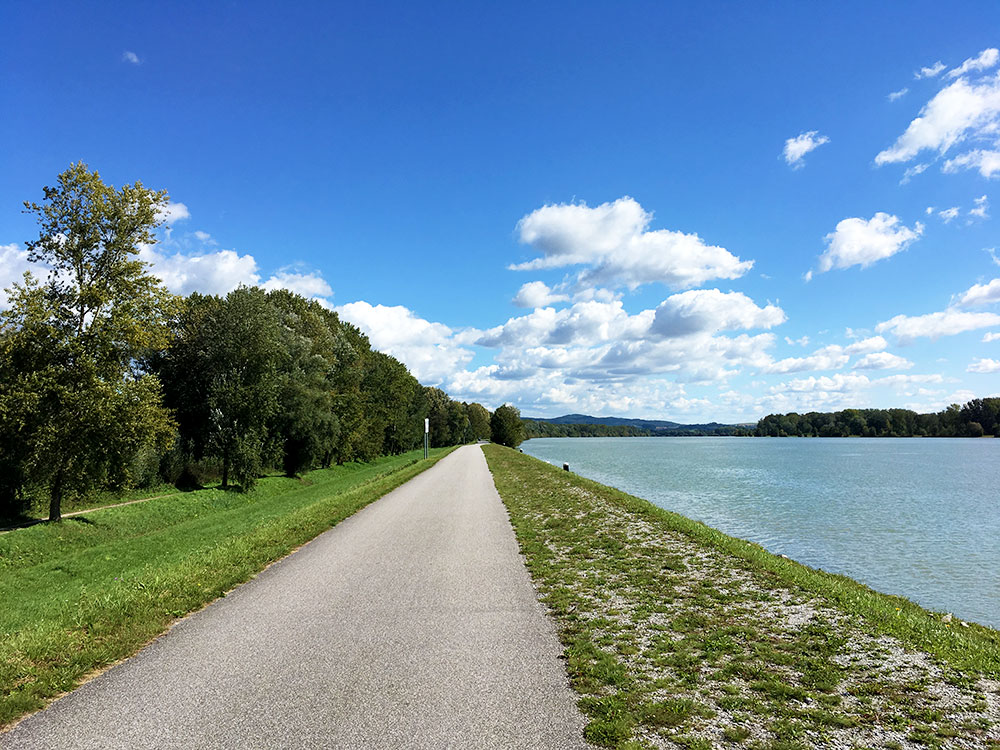 Donauradweg: Oberösterreich mit dem Fahrrad entlang der Donau entdecken