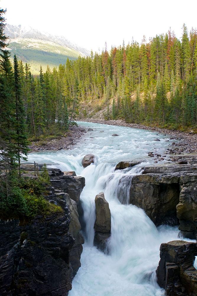 Jasper Nationalpark Top 10 Sehenswürdigkeiten: Das sind die Highlights im Park - Sunwapta Falls