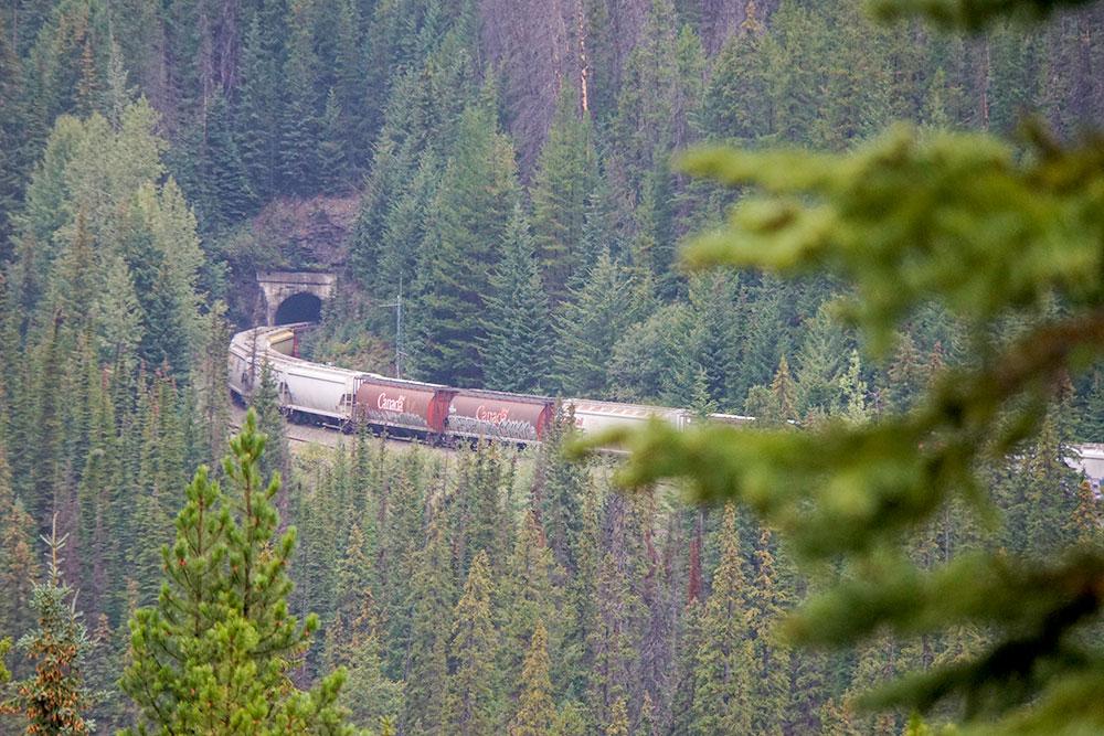 Kanada Rundreise: Highlights auf der Nationalparkroute von Vancouver nach Banff - Yoho Nationalpark, Upper Spiral Tunnel Viewpoint