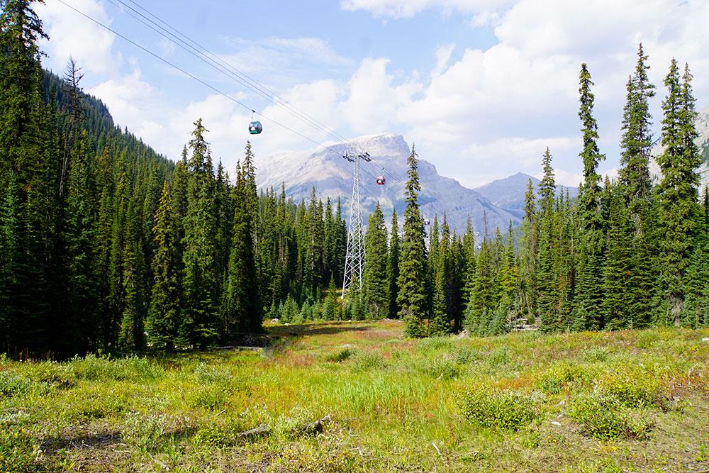 Kanada Rundreise: Highlights auf der Nationalparkroute von Vancouver nach Banff - Banff Nationalpark, Sunshine Village Wandern