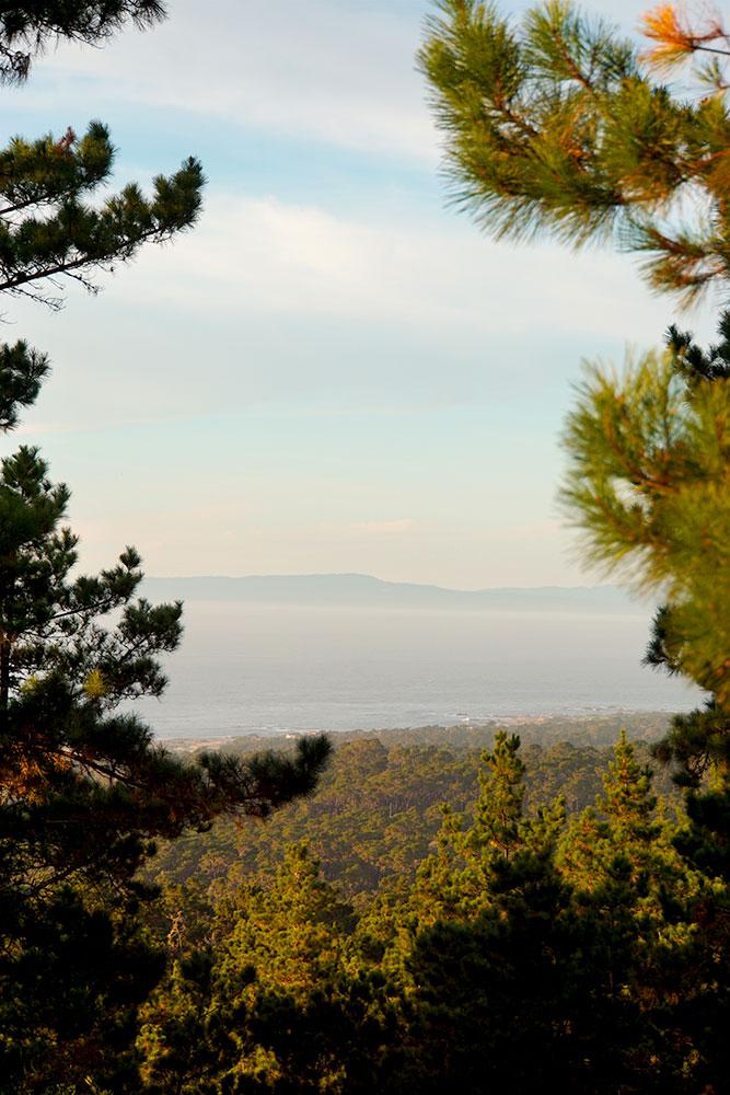 17-Mile-Drive Sehenswürdigkeiten: Highlights auf der bekannten Straße in Monterey - Huckleberry Hill