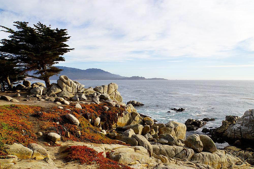 17-Mile-Drive Sehenswürdigkeiten: Highlights auf der bekannten Straße in Monterey - Cypress Point Lookout