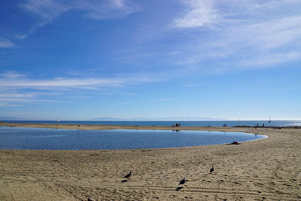San Francisco Tagesausflug: Die schönsten Ausflugsziele rund um die Stadt - Santa Cruz Strand am Boardwalk