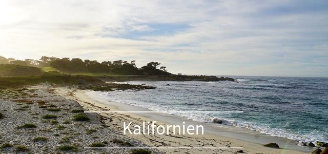 San Francisco Tagesausflug: Die schönsten Ausflugsziele rund um die Stadt