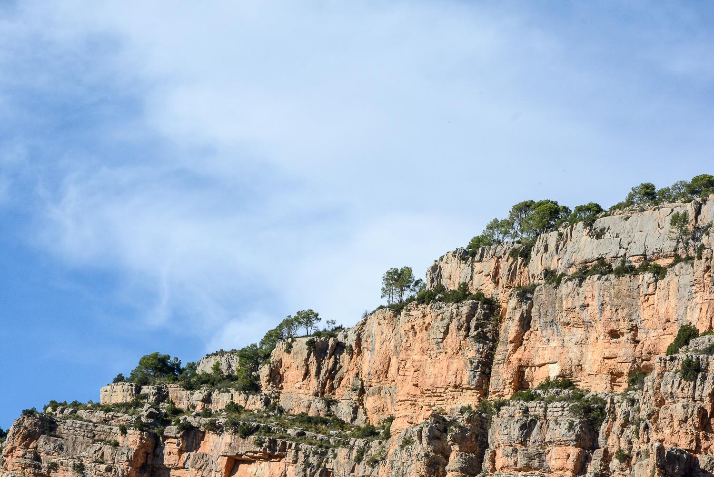 Valencia und seine Berge: Wandern im Hinterland - Gänsegeier beobachten beim Wandern in Chelva