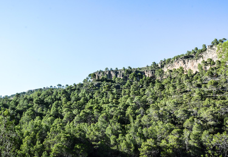Valencia und seine Berge: Wandern im Hinterland - Barranco Moreno, Pinien Berge