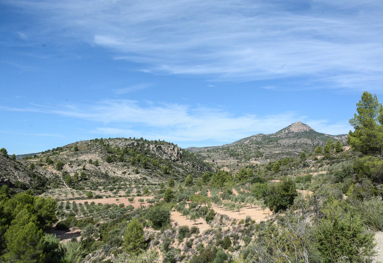 Valencia und seine Berge: Wandern im Hinterland - Aquädukt Pena Cortada