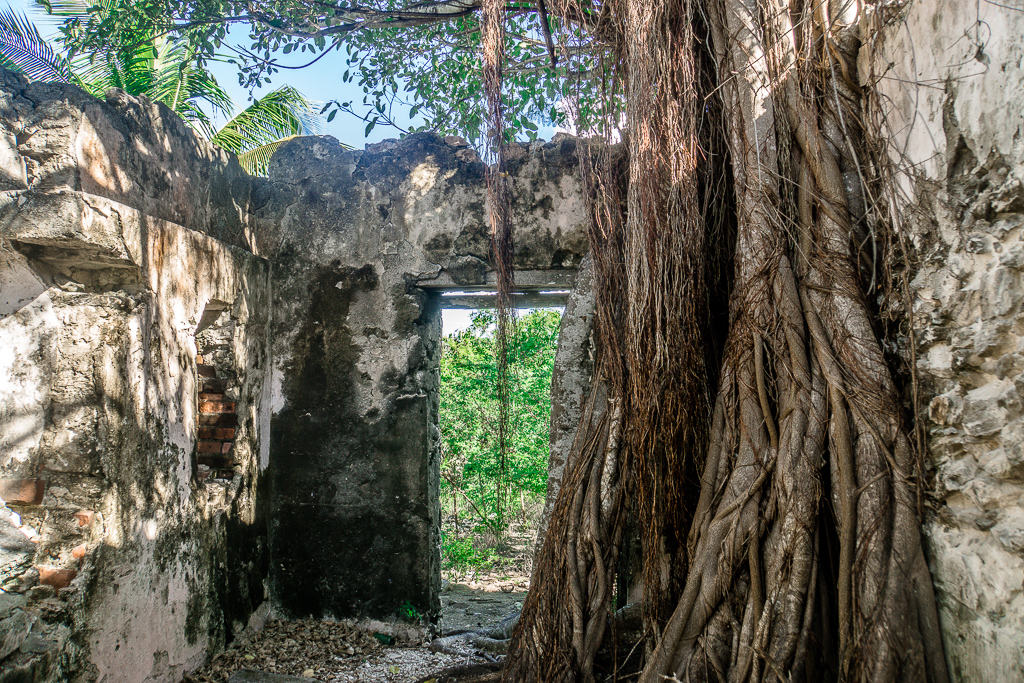 Top 10 Cat Island Sehenswürdigkeiten: Highlights und Strände der Bahamas Insel - Port Howe Lost Places, verlassene Häuser