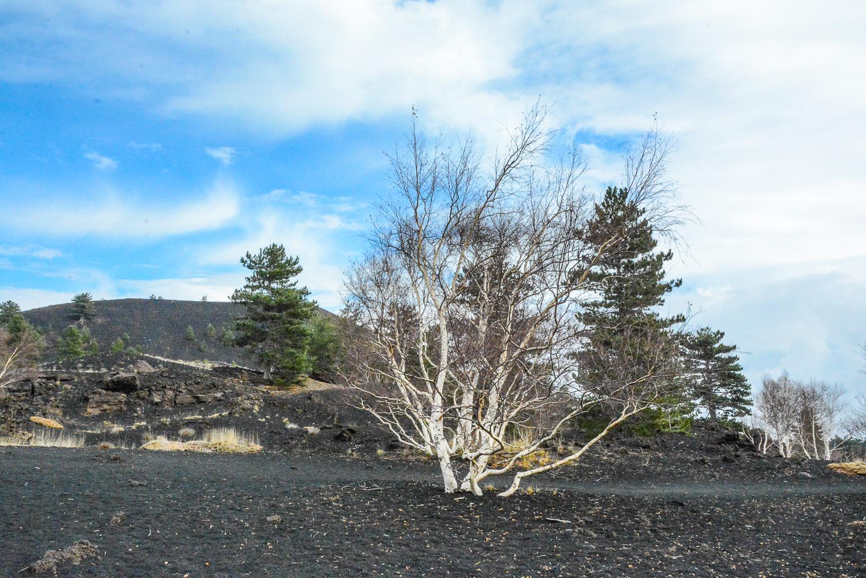 Sizilien: Wanderung auf den Ätna - Sartorius Krater