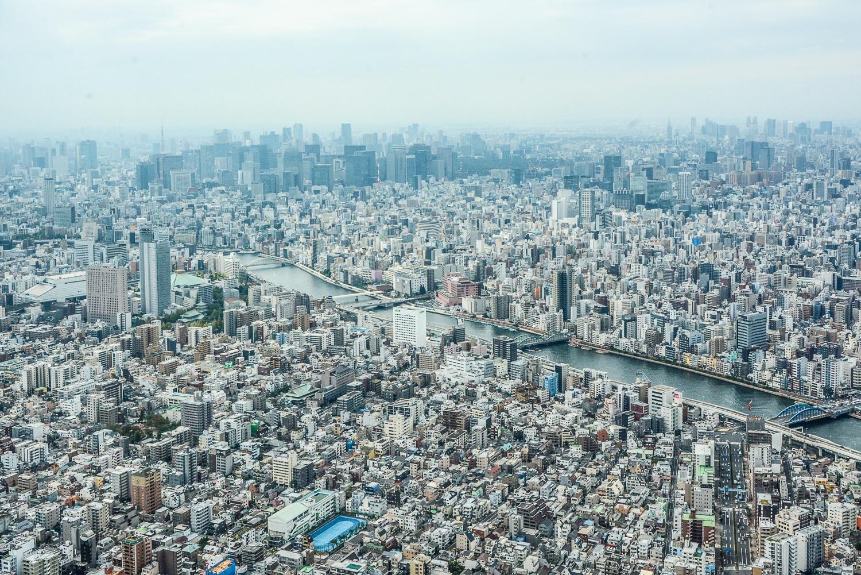 Tokio Highlights in 48 Stunden: Themencafés & Sehenswürdigkeiten in 2 Tagen