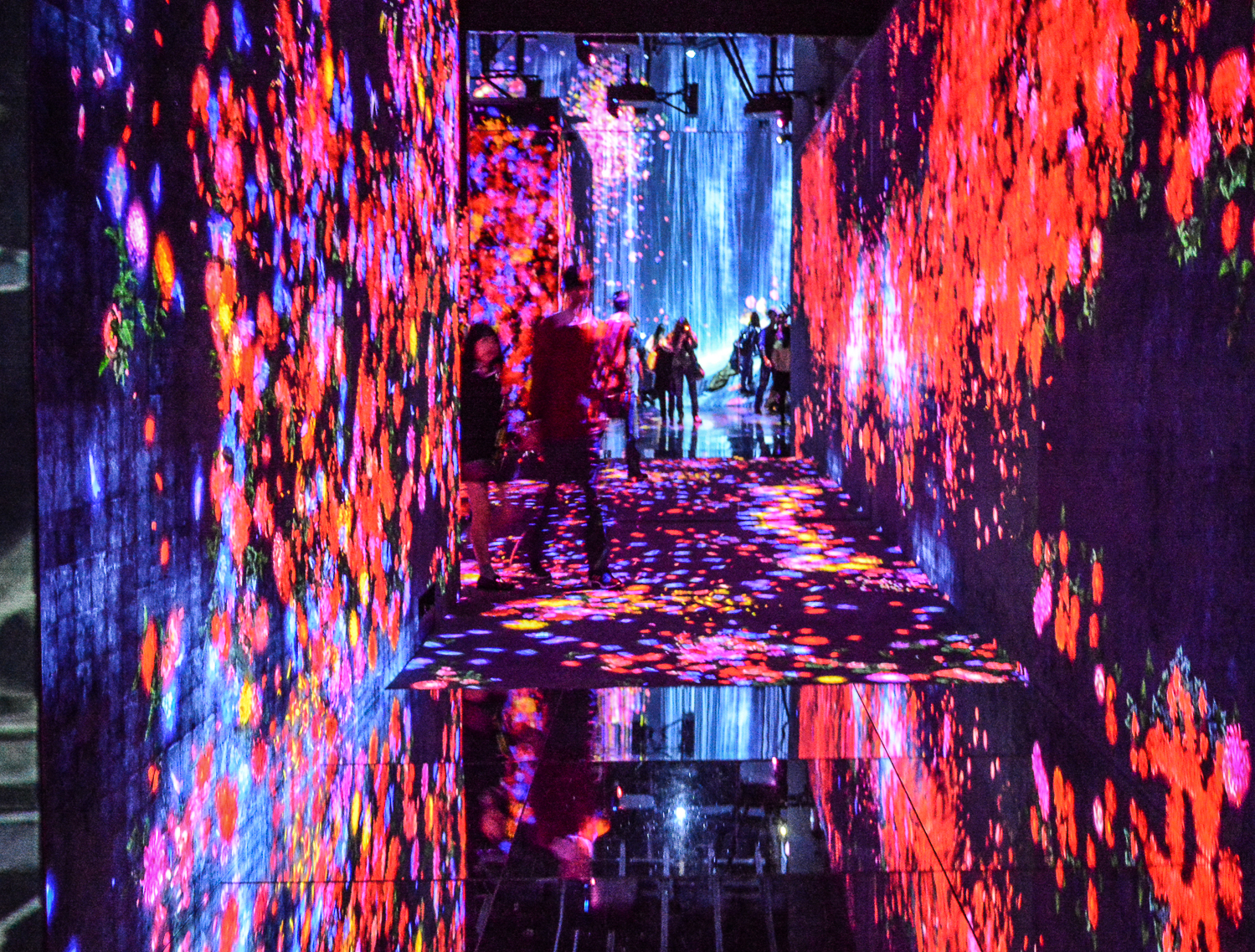 Tokio Highlights in 48 Stunden: teamLab Borderless Universe Digital Art Museum