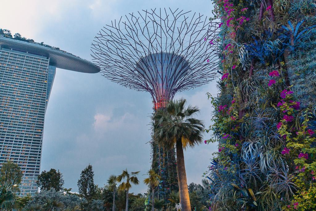 Gardens by the Bay und Supertrees - Singapur Top 10 Sehenswürdigkeiten