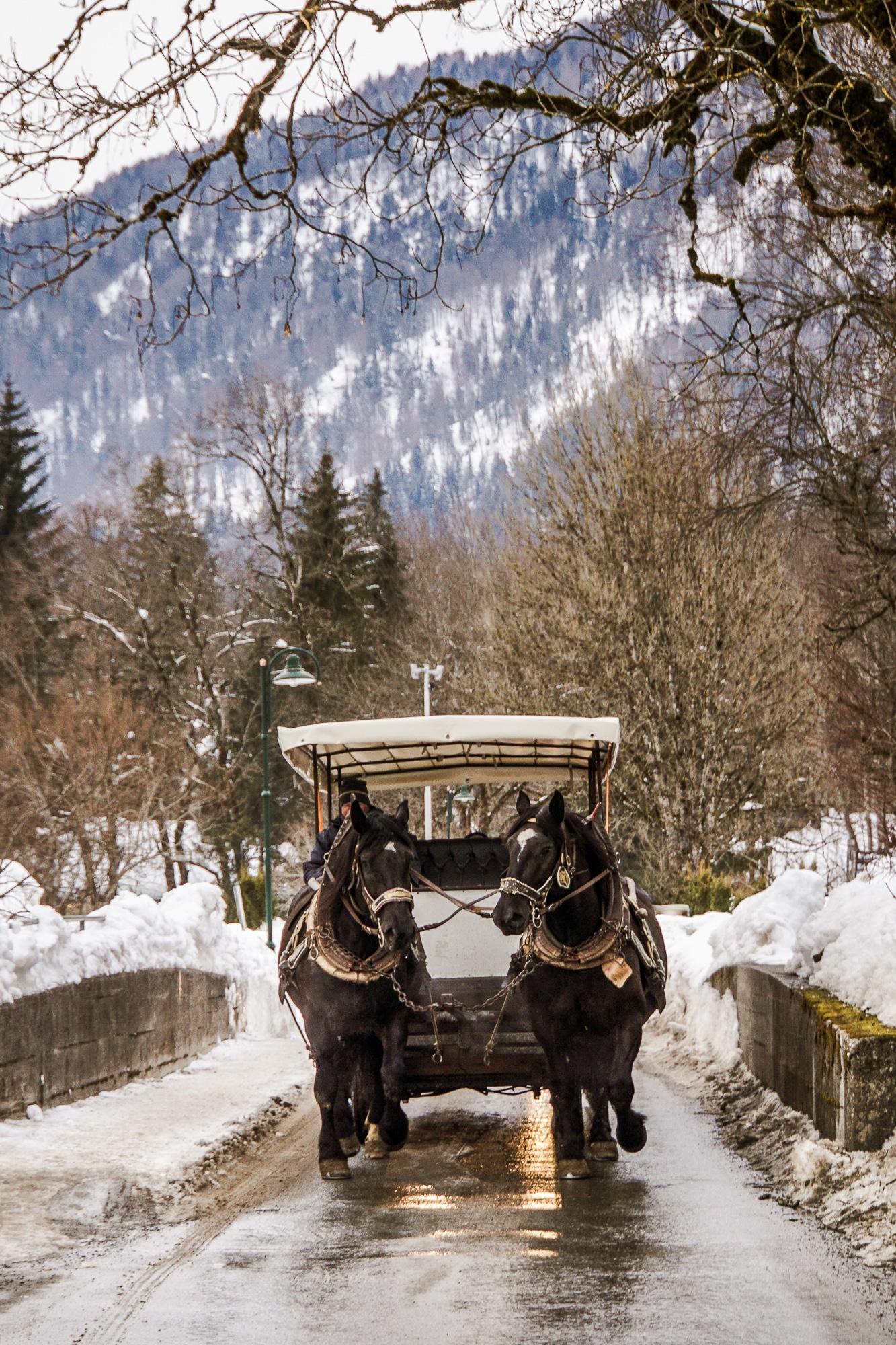 Kaiserwinkl Skiurlaub: Tipps zum Skifahren, Langlauf & andere Highlights - Pferdekutsche fahren Kössen