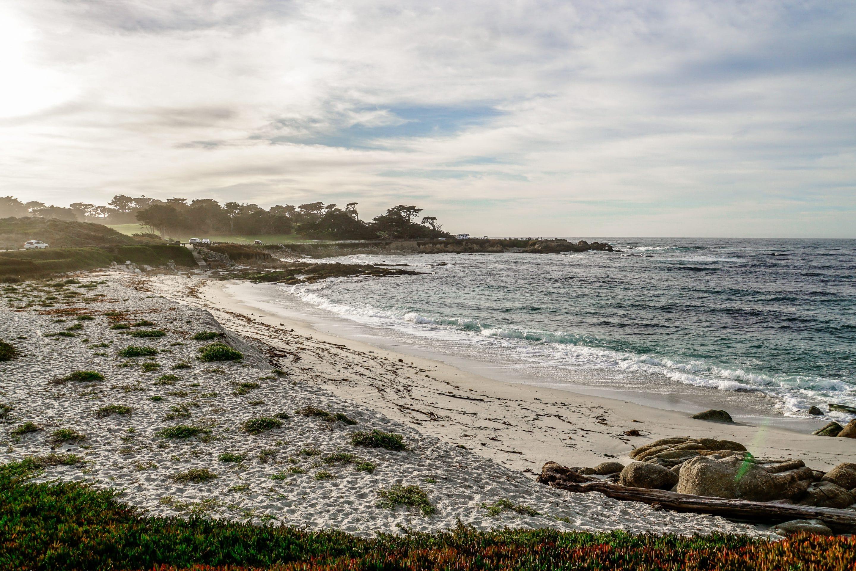 San Francisco Tagesausflug: Schönste Ausflugsziele rund um die Stadt