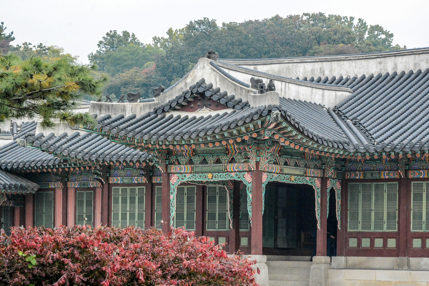 Seoul Tipps und Sightseeing in Seoul: 12 Highlights in Koreas Hauptstadt - Changdeokgung Palace