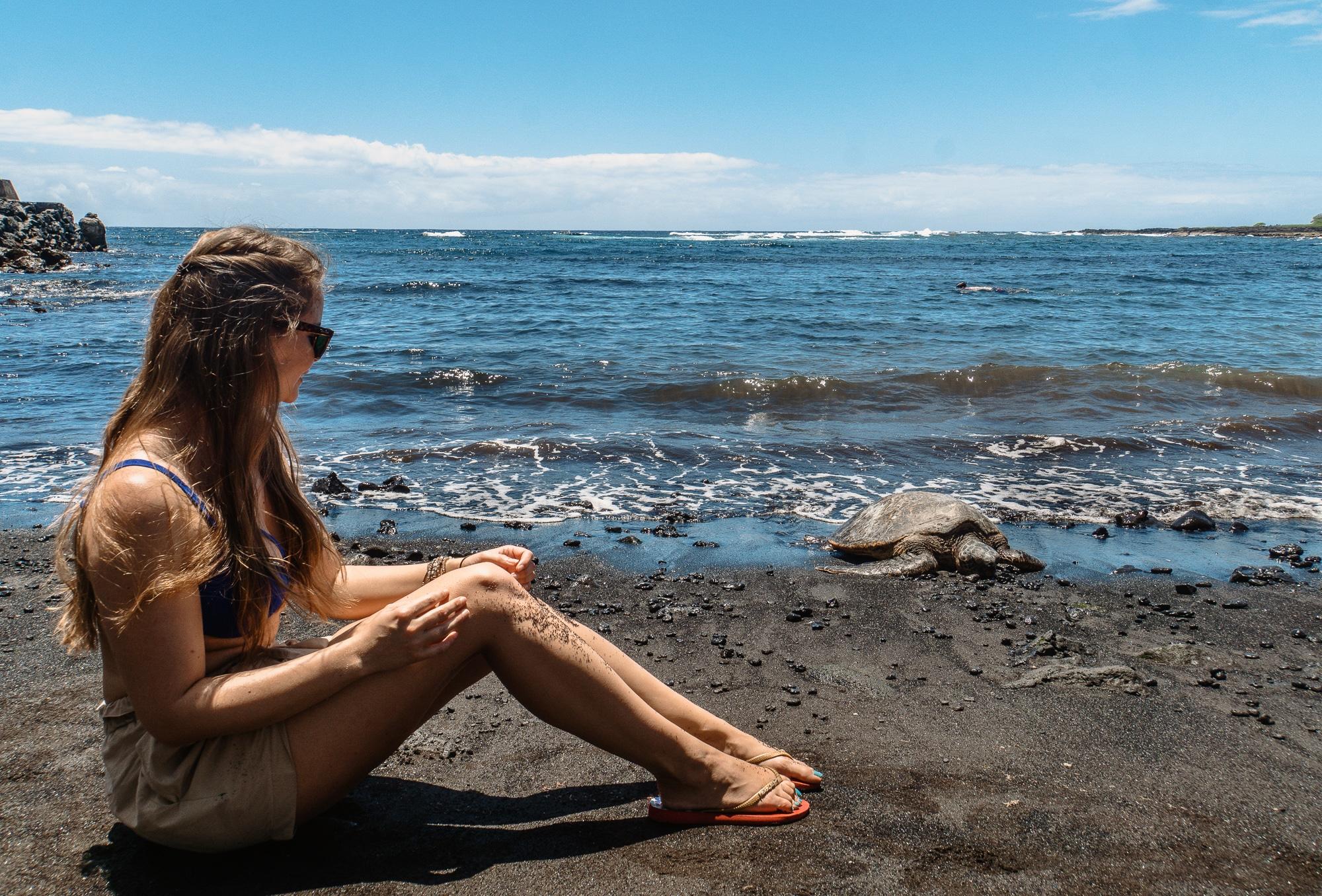 Tiere beobachten auf Big Island - schönste Tierbegegnungen auf Hawaii - Schildkröten am Black Sand Beach