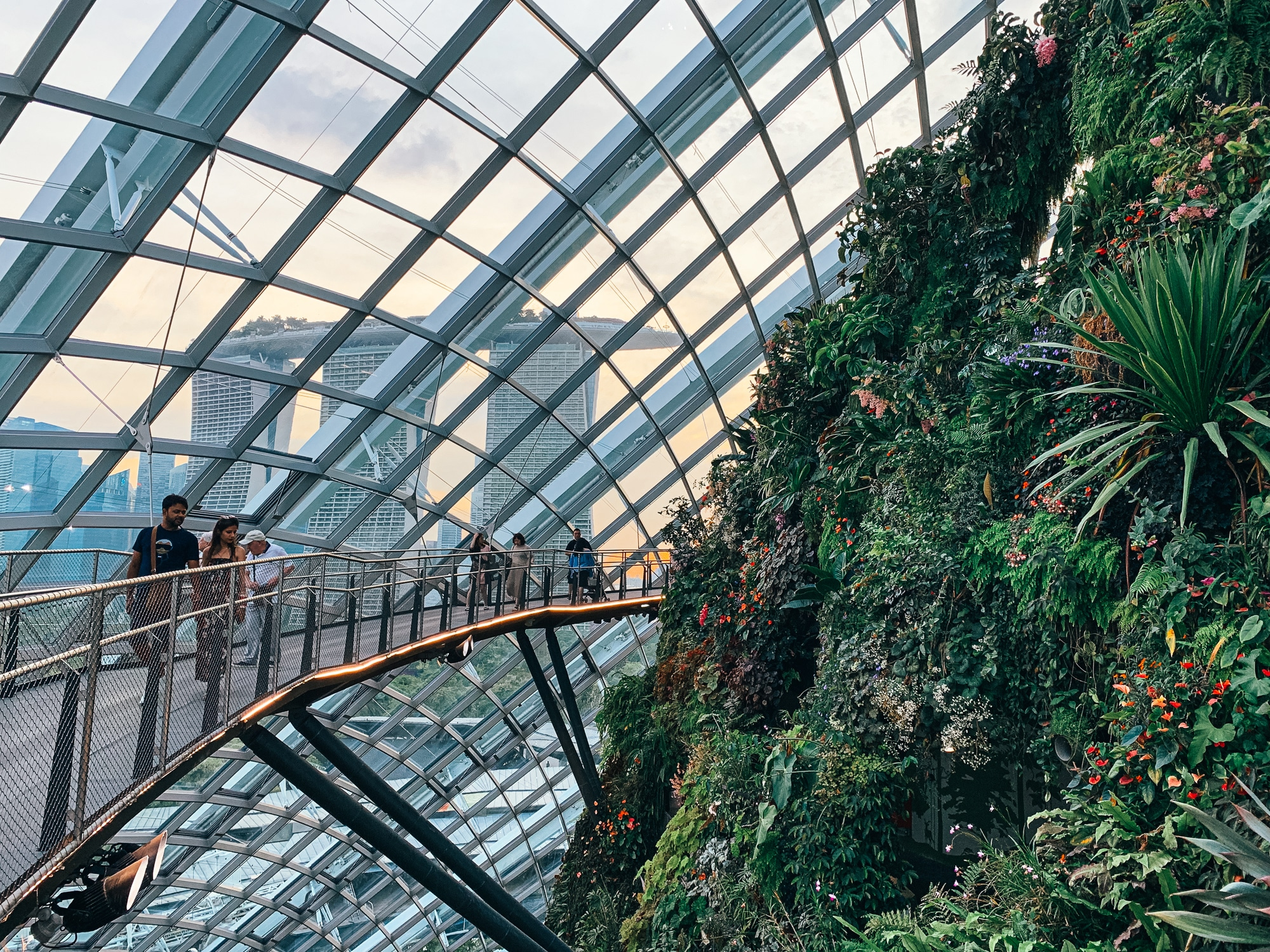 Gardens by the Bay: Sehenswürdigkeiten, Highlights und Eintrittspreise - Cloud Forest Skywalk