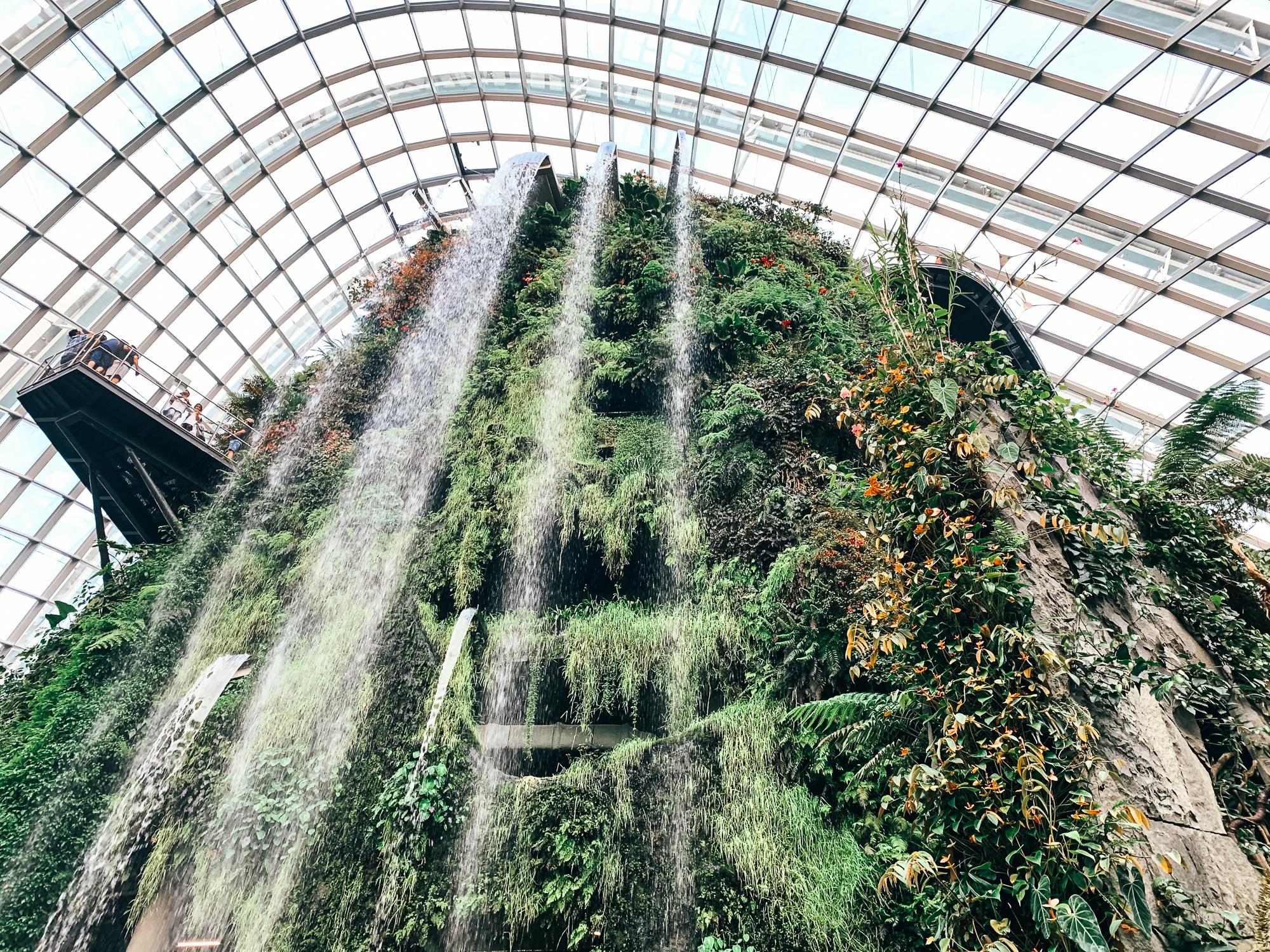 Gardens by the Bay: Sehenswürdigkeiten, Highlights und Eintrittspreise - Cloud Forest Wasserfall