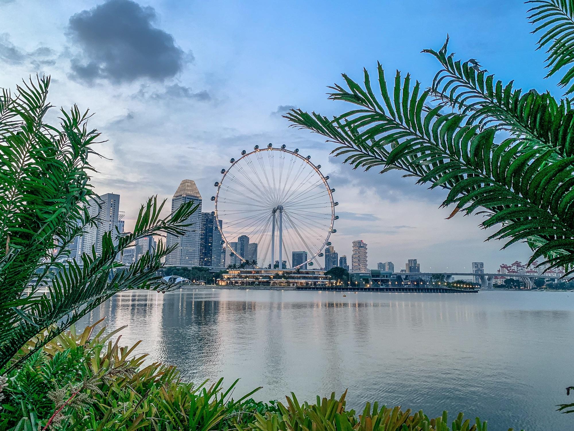 Gardens by the Bay: Sehenswürdigkeiten, Highlights und Eintrittspreise - Ausblick Singapore Flyer