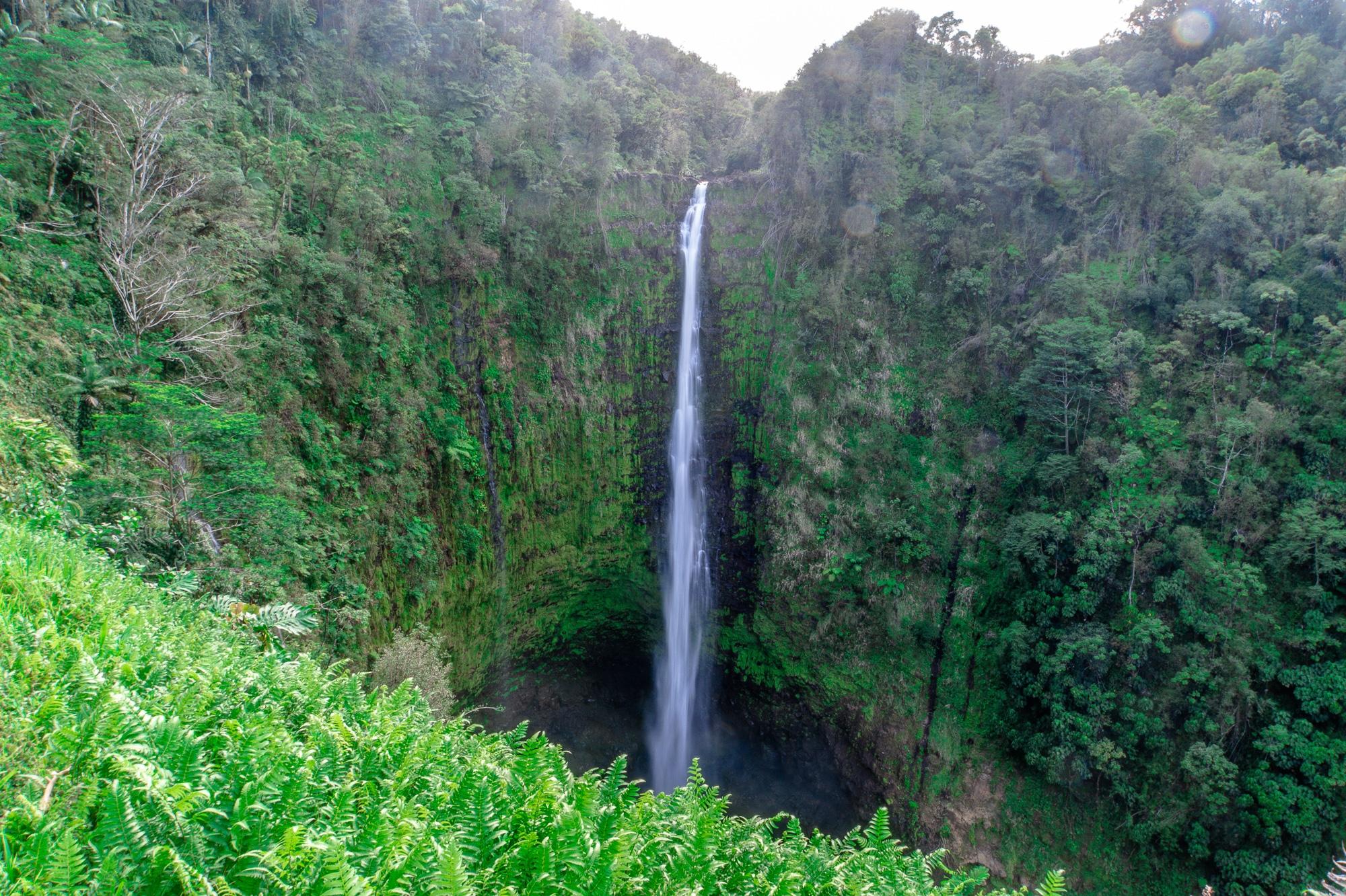 Top 10 Big Island Sehenswürdigkeiten: Tipps für einen Roadtrip auf Hawaii - Akaka Falls