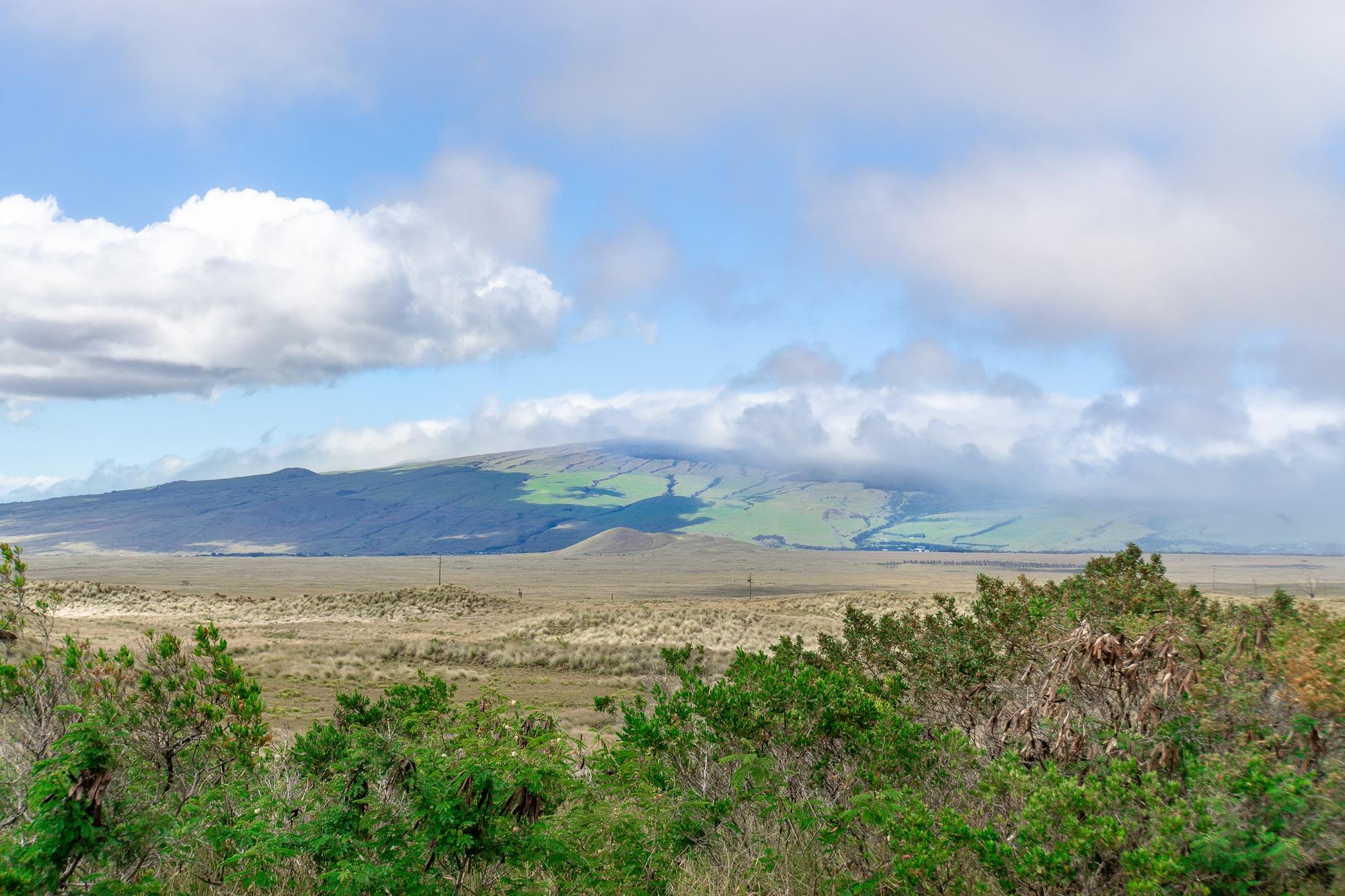 Top 10 Big Island Sehenswürdigkeiten: Tipps für einen Roadtrip auf Hawaii - Landschaft