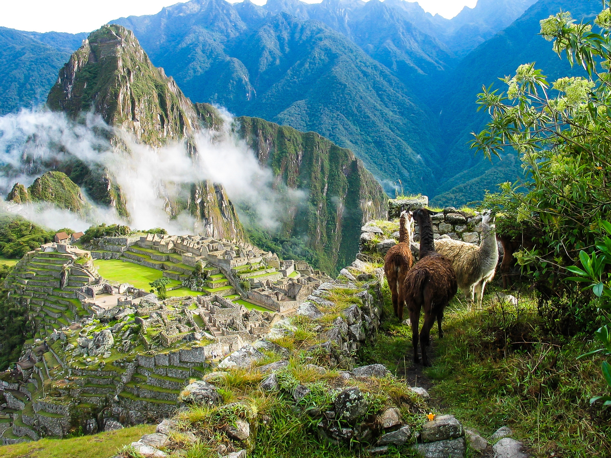 Wandern und Trekking in Peru: Die besten Routen ohne Massentourismus - Machu Picchu