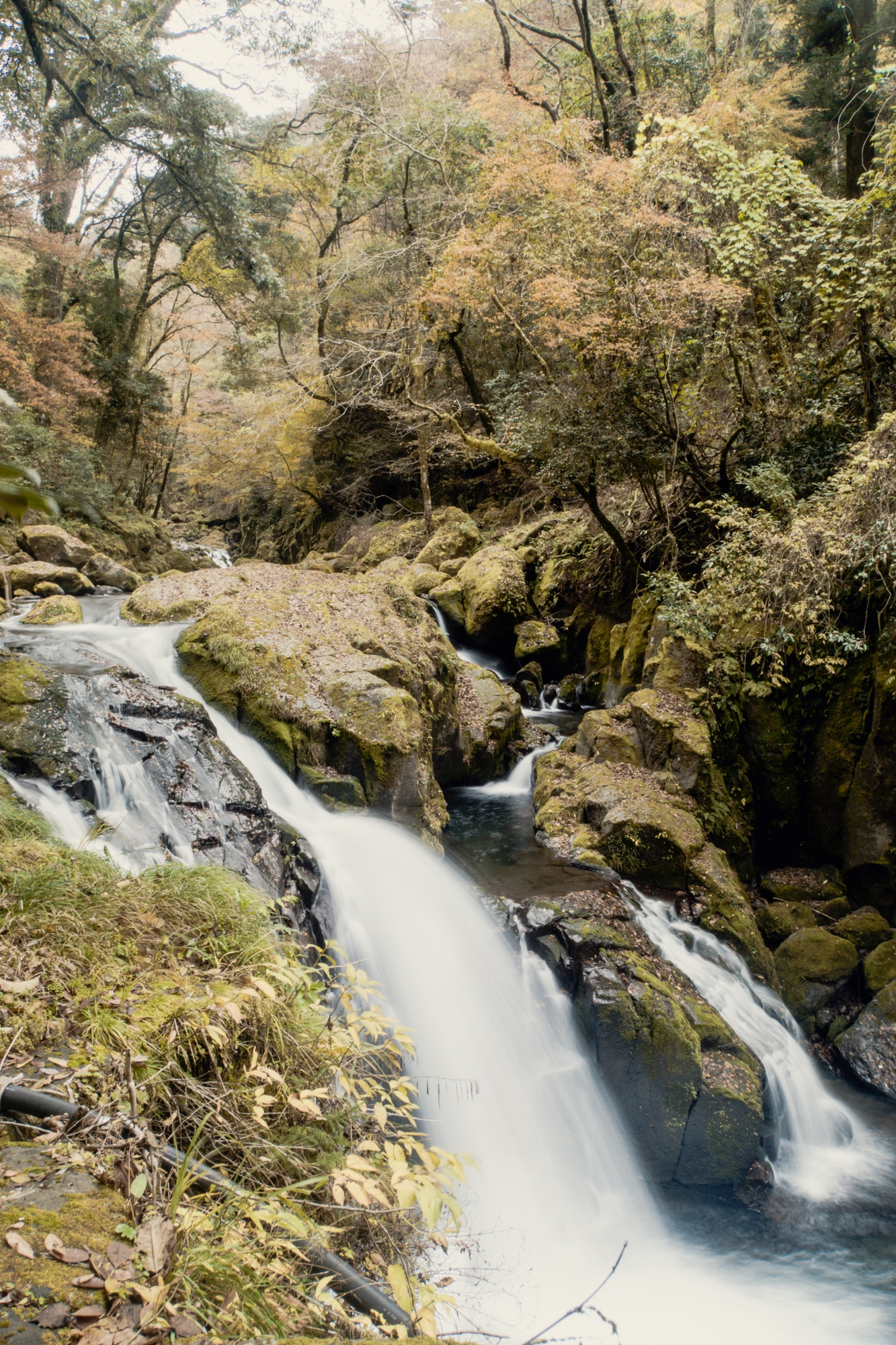 Kyushu Rundreise: Reisetipps, Onsen und Highlights in Japans Süden - Kikuchi Schlucht