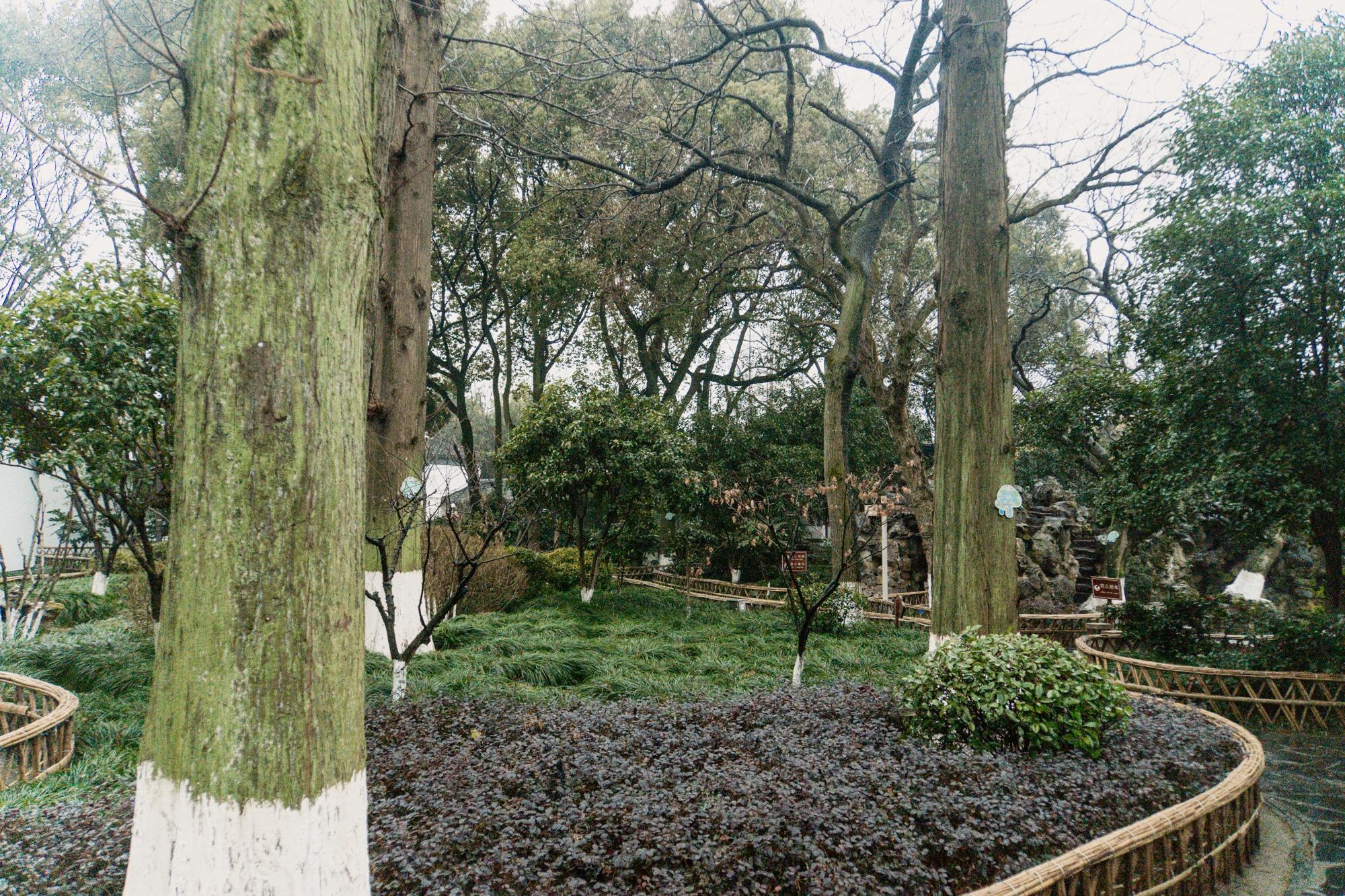 Zhujiajiao Tagesausflug: Tipps für die Wasserstadt bei Shanghai - Kezhi Yuan Garten