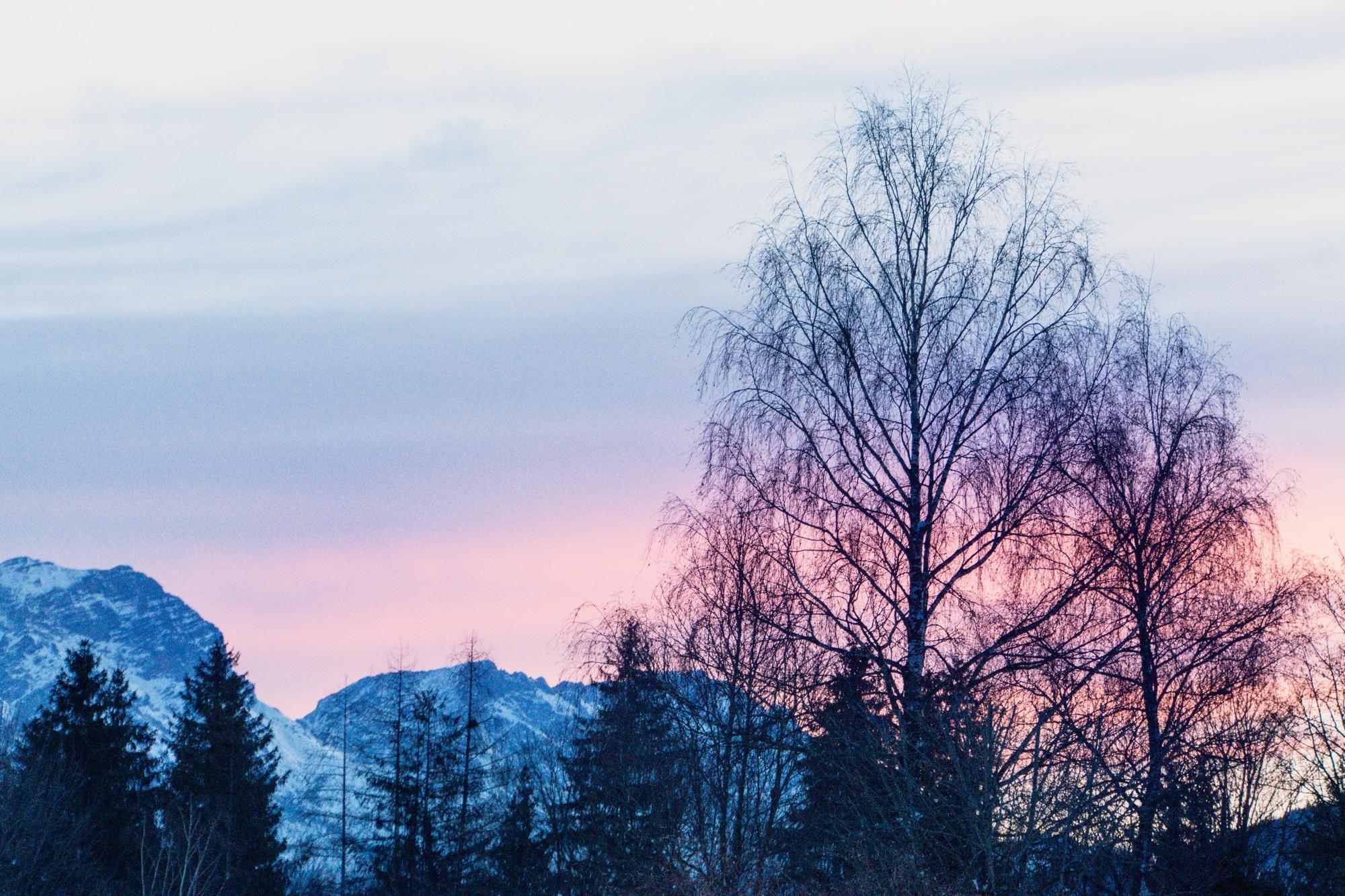 Puradies Leogang: Das Wellnesshotel und Skihotel direkt an der Piste - Aussicht am Morgen