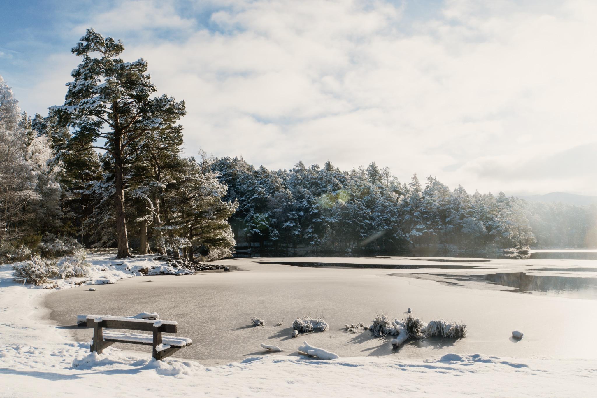 Cairngorms Nationalpark: Die SnowRoads Scenic Route in den Highlands - Loch An Eilein