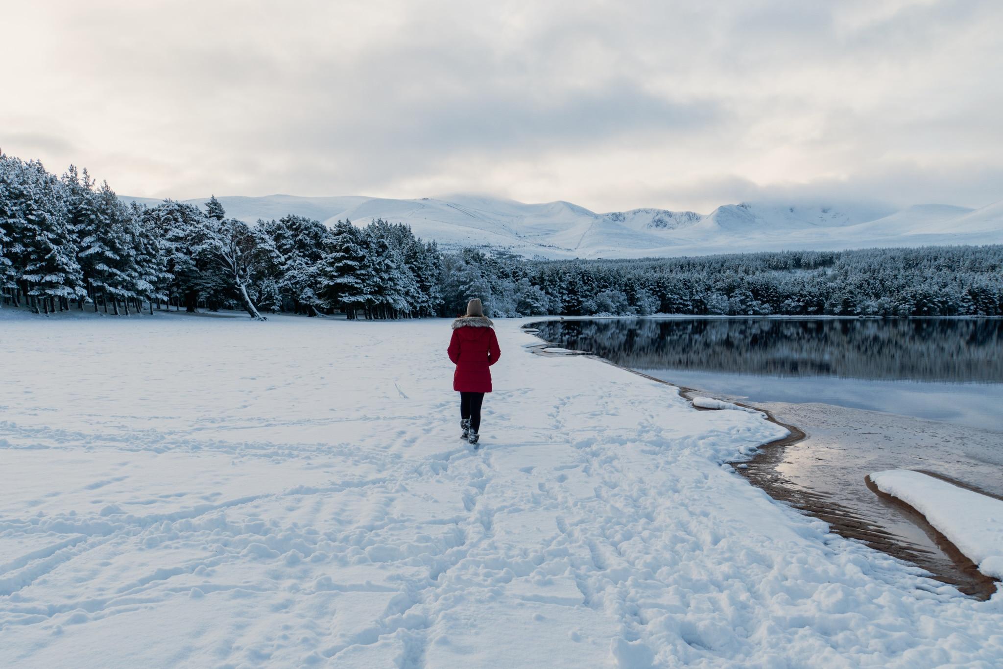 Cairngorms Nationalpark: Die SnowRoads Scenic Route in den Highlands - Loch Morlich