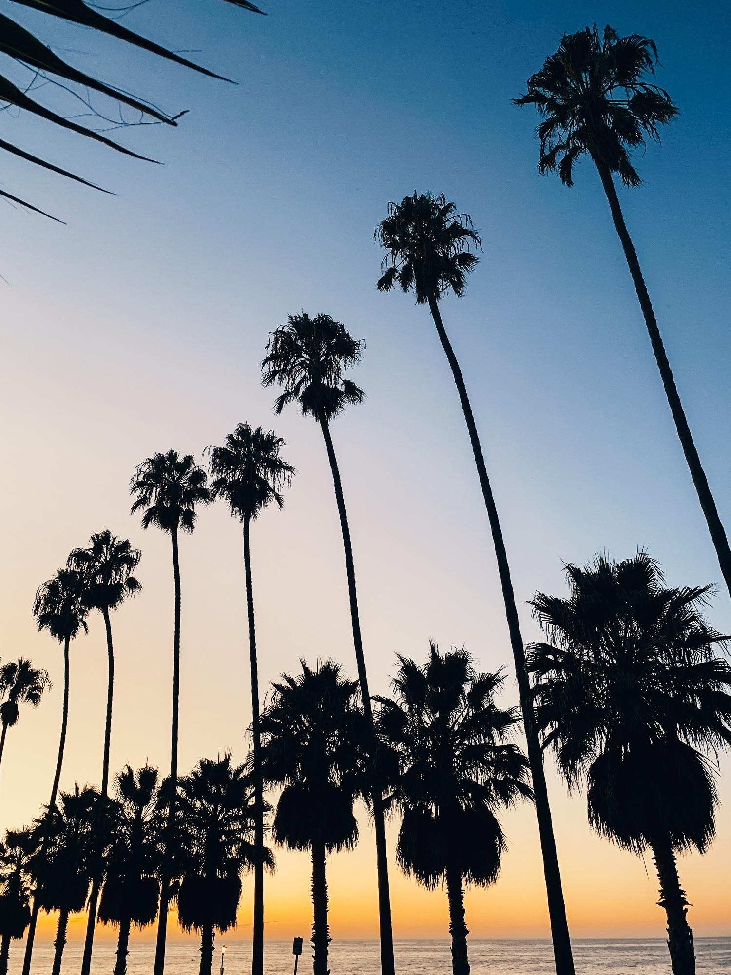 San Diego Sehenswürdigkeiten: Highlights und Things to do für eure Reise