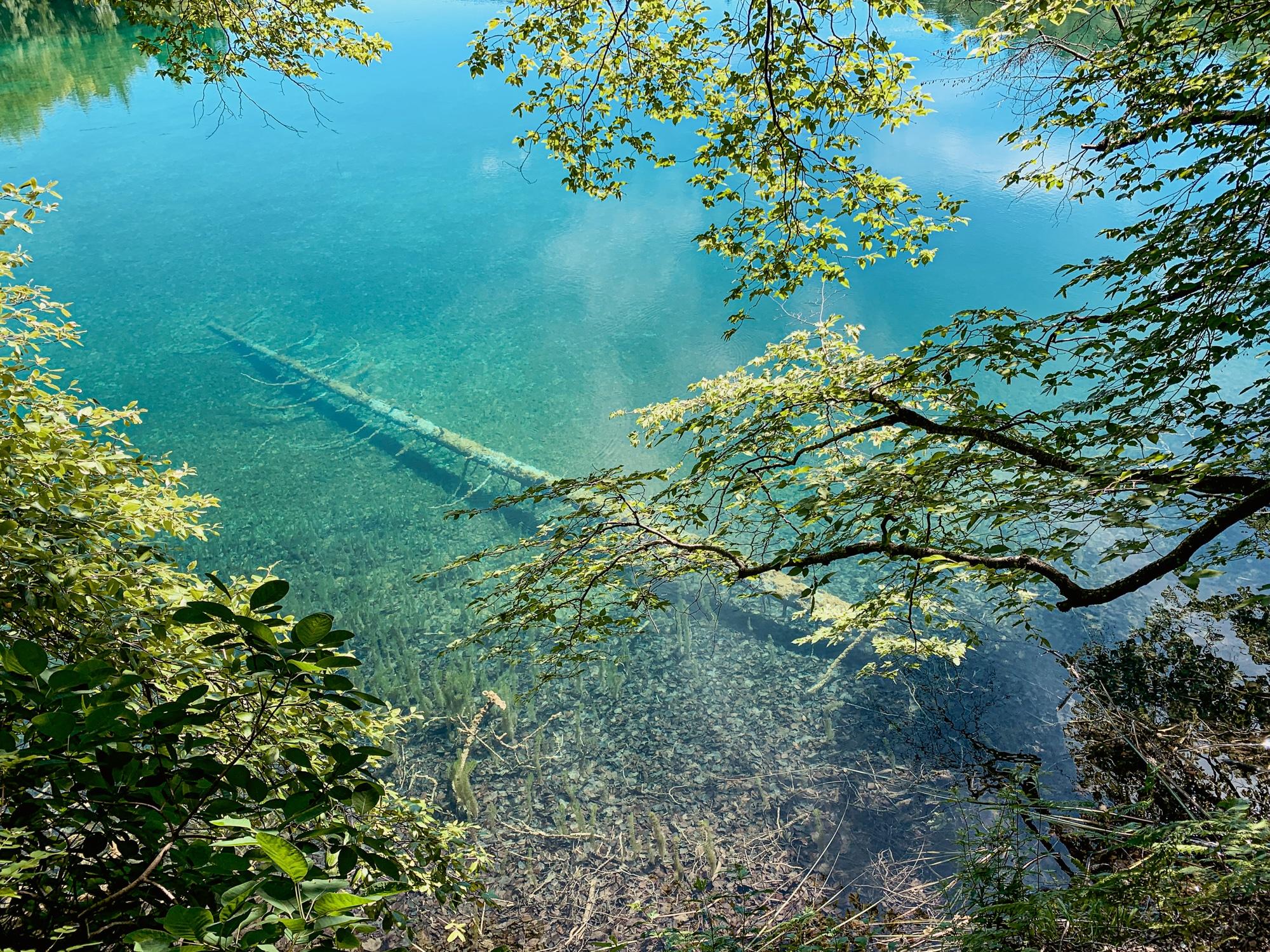 Nationalpark Plitvicer Seen: Tipps für den schönsten Kroatien Nationalpark - klares Wasser