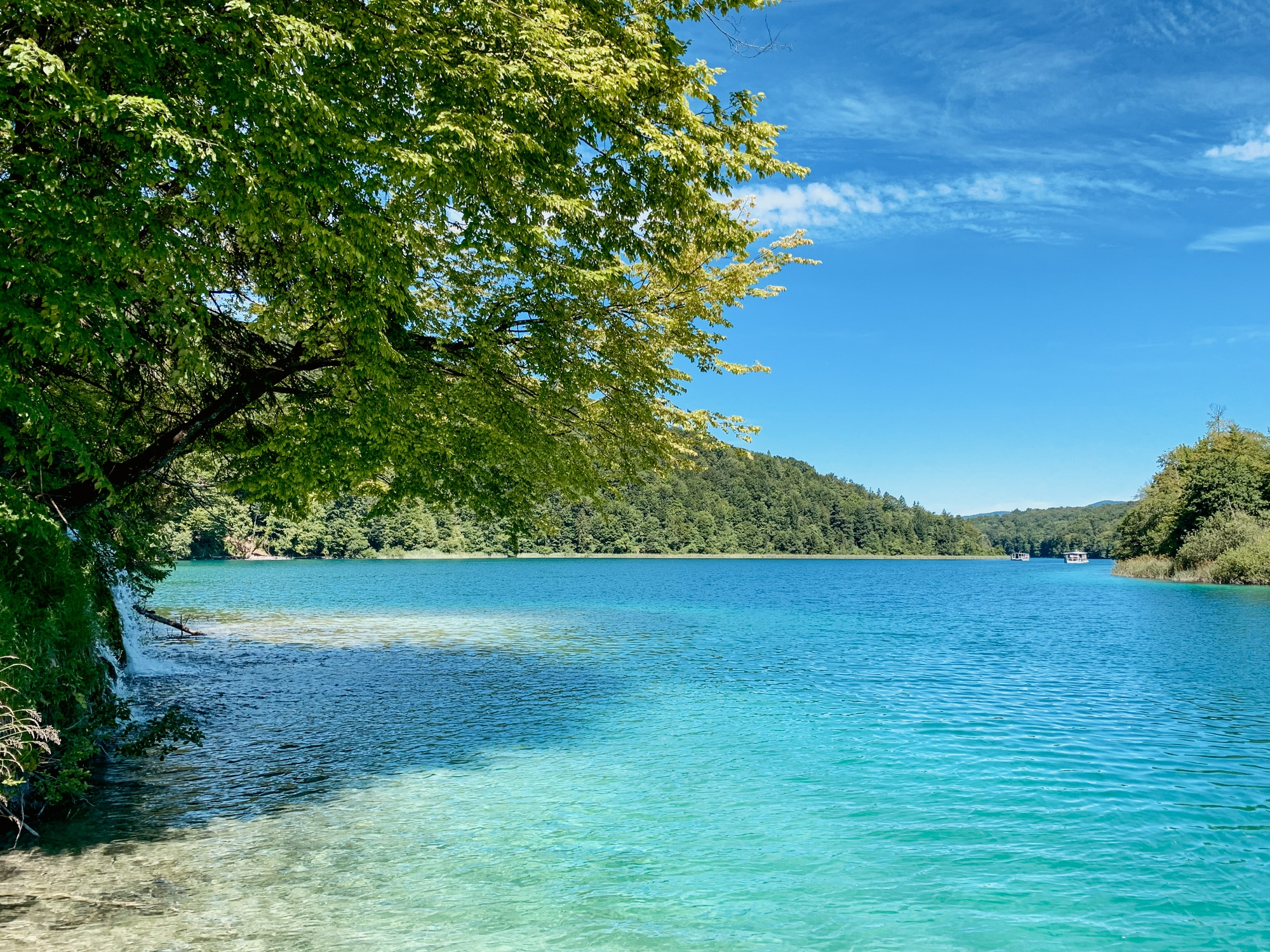 Nationalpark Plitvicer Seen: Tipps für den schönsten Kroatien Nationalpark - Türkisblaues Wasser