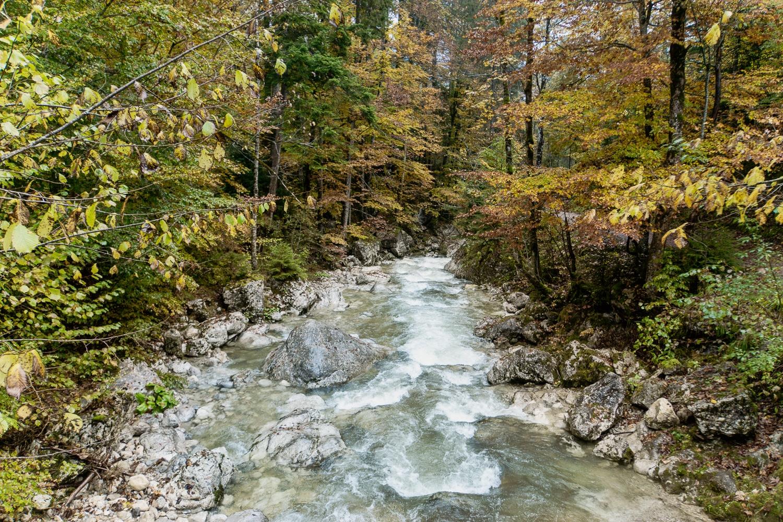 Oberaudorf: Sehenswürdigkeiten, Ausflüge und schönste Wanderungen - Gießenbachklamm Rundwanderung