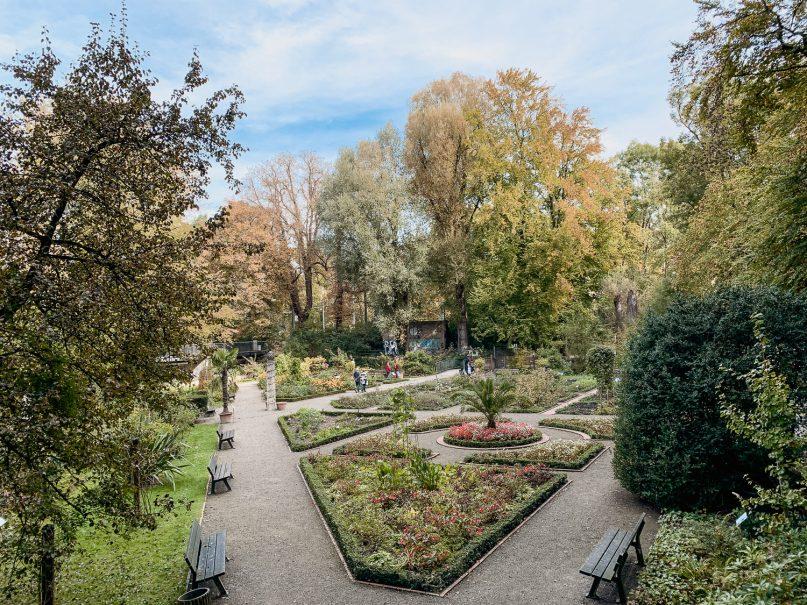 Augsburg Sehenswürdigkeiten: Kräutergärtlein im Park am Roten Tor Kräutergarten