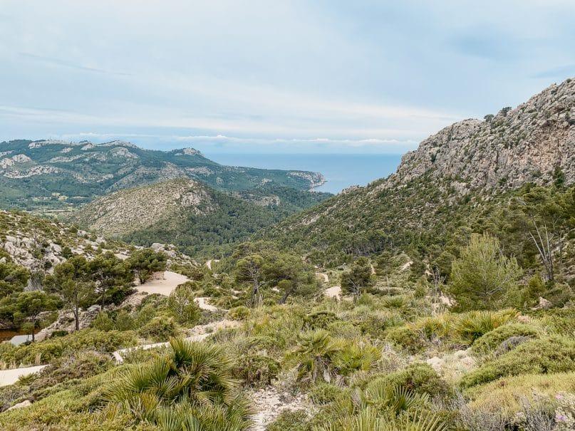 Ausflugsziele Mallorca: Wanderung zur Ruine La Trapa und Sant Elm