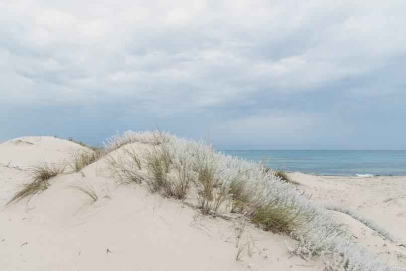 Rena Majore Dünen - schönste Strände auf Sardinien